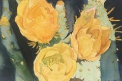 Golden Cactus Roses