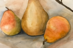 Three Pears and a Branch