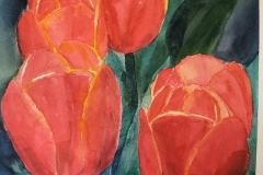 Tulips with a Glow